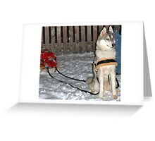 Winter Delivery Service Greeting Card