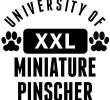 University Of Miniature Pinscher by kwg2200