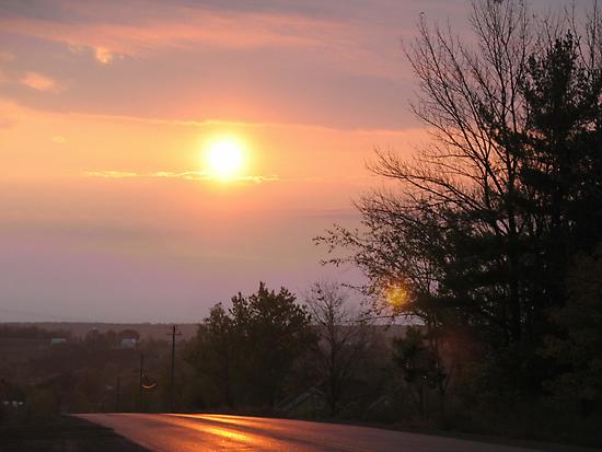 Orange Morning by nikspix