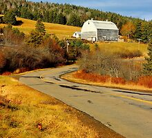 Winding Country Road by Kathleen Daley