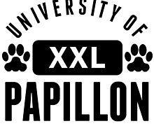 University Of Papillon by kwg2200