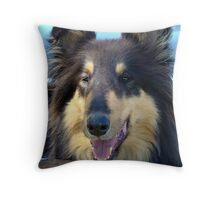 Collie Dog Throw Pillow