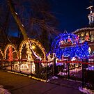 Crazy amount of xmas lights on this house by Sven Brogren