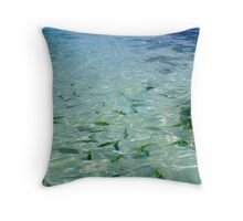 Tropical School Throw Pillow