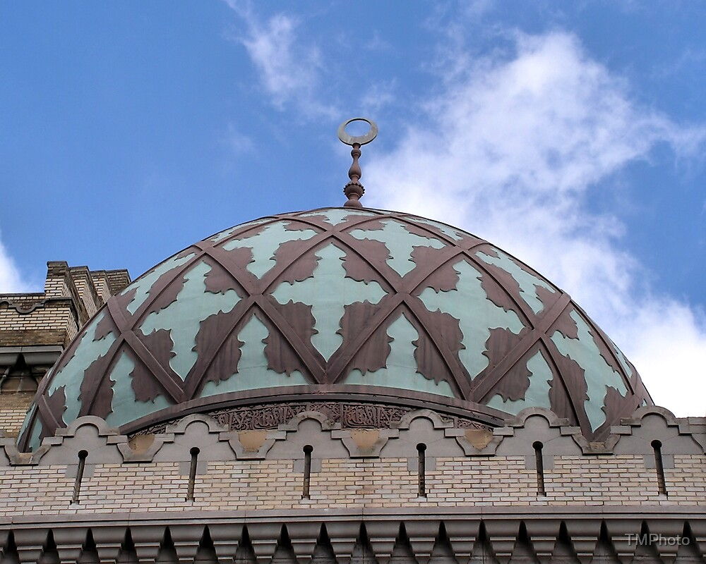 The Dome of the Fox by TMPhoto