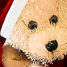 Have yourself a beary little Christmas. by Richard Annable