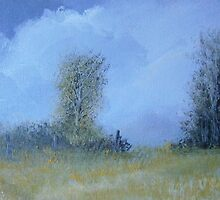 Landscape 700 by andy davis