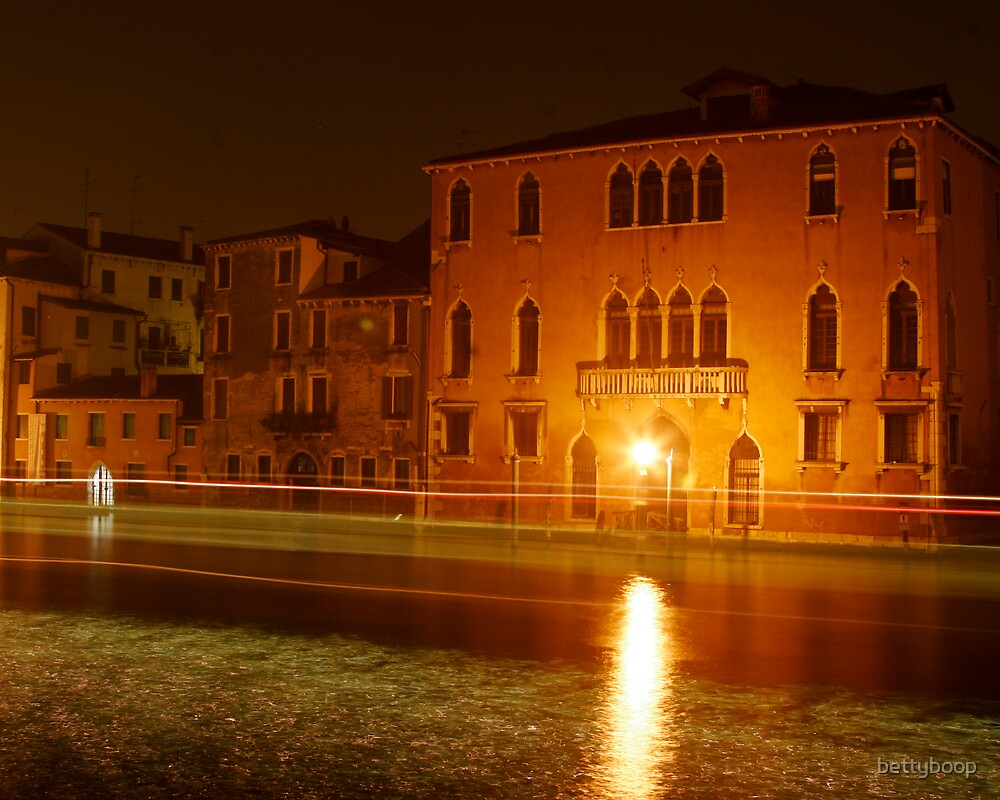 Traffic in Venice by bettyboop
