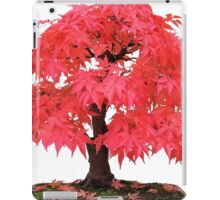 Cherry Maple iPad Case/Skin