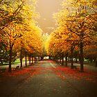 Autumnal Geneva by moseszap