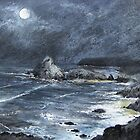 Moonlit Cove by terryjohn2