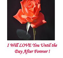 I WILL LOVE YOU UNTIL THE DAY AFTER FOREVER by JAYMILO