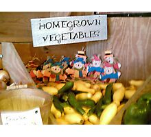 Home grown vegetables Photographic Print