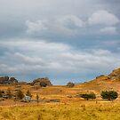 Wide Open Spaces of Otago by Linda Cutche