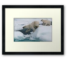 Follow Me! Framed Print