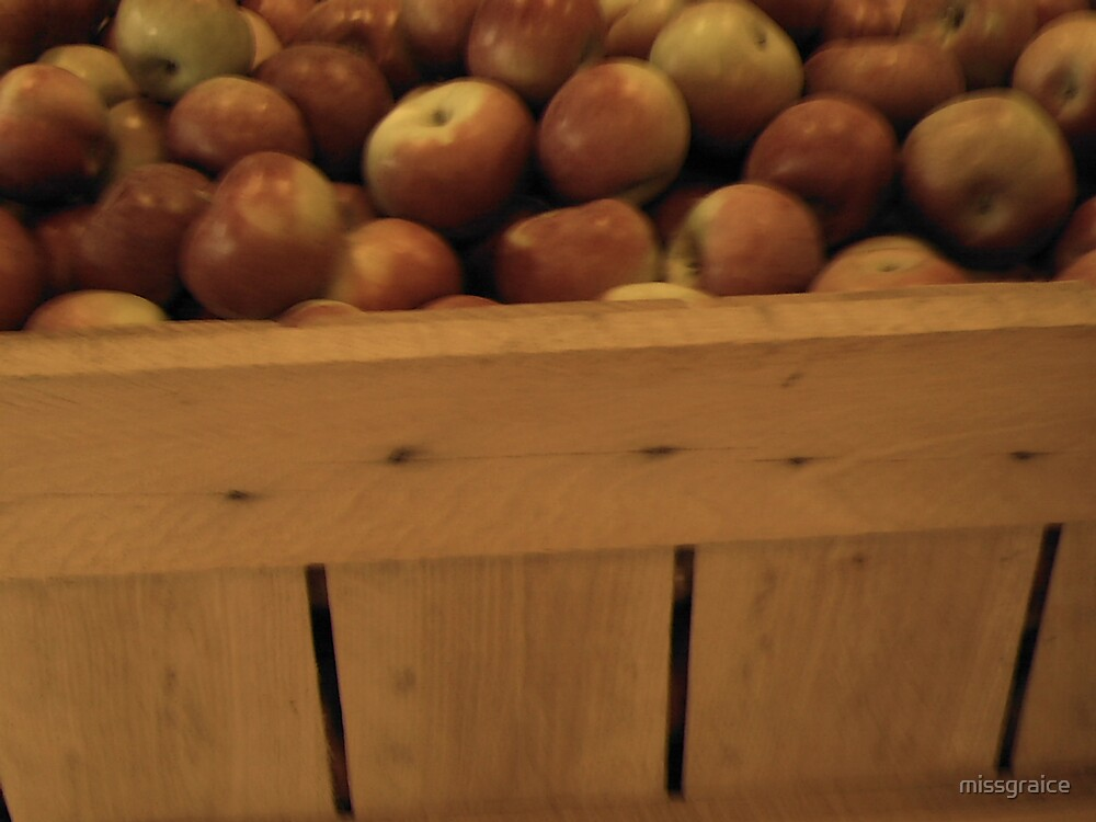 fresh picked apples by missgraice