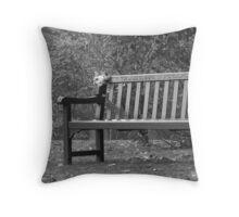 memorial bench Throw Pillow