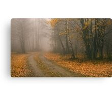 The Bleakness of October Canvas Print