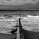 Portobello Tide by Xpresso