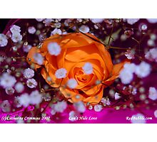 Cant Hide Love-- flower power project Photographic Print