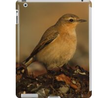 Northern Wheatear iPad Case/Skin