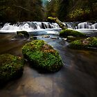 Sweet Creek Oregon 1 by Bob Christopher