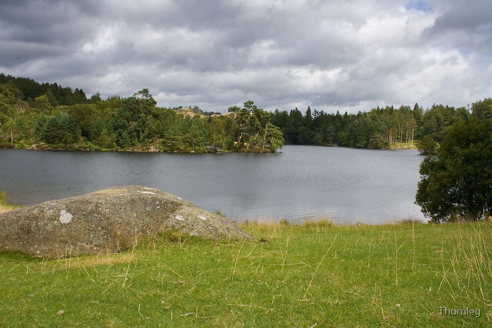 Tarn Howes by Thornley