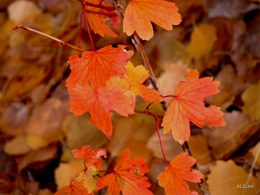 Fiery Fall by aLiLee
