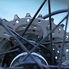 gears by LynnEngland