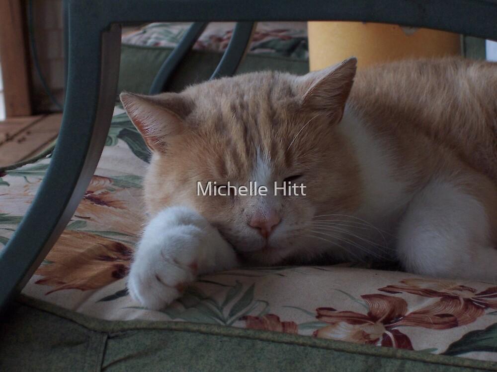 Rosco's Sleeping by Michelle Hitt