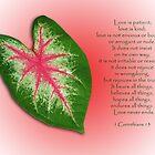 1 Corinthians 13 . . . Love is . . . by Bonnie T.  Barry