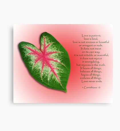 1 Corinthians 13 . . . Love is . . . Canvas Print