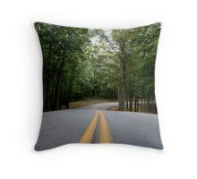 Lake Cumberland Park Road Throw Pillow