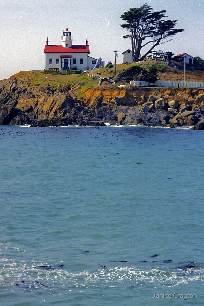 Battery Point Lighthouse Calf. by Janice Crayton
