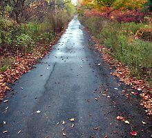 Longwet Road by nikspix