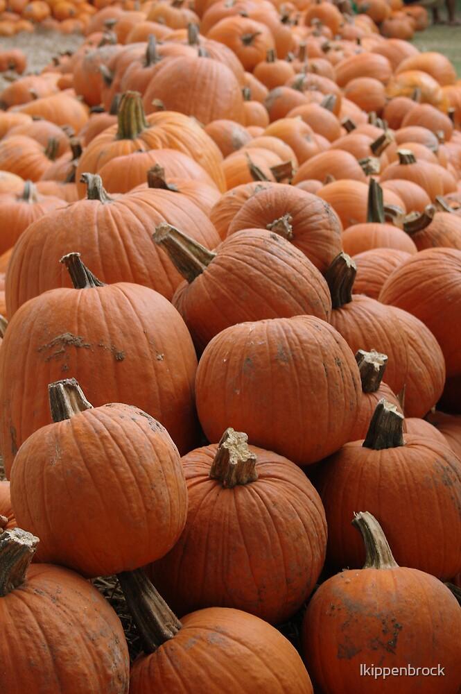 Pumpkins! by lkippenbrock