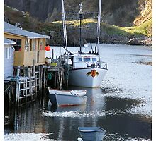 Quidi Vidi Harbour  by scwalsh