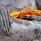 Buddha Hand by Dave Lloyd