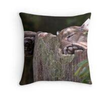 Cougar Sleeping Throw Pillow