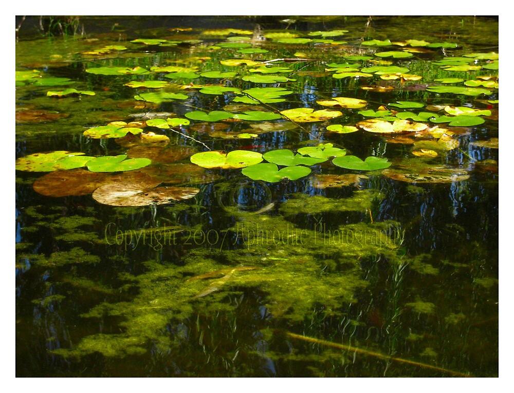 I dreamt of Monet by JetsetAphrodite