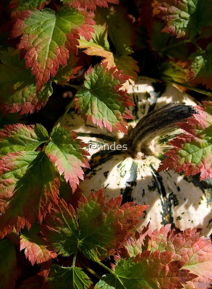 Astilbe Leaves & Gourd by jenndes