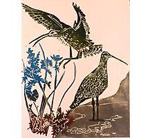 Curlews - lino cut print Photographic Print