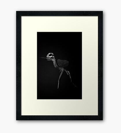 Running Fossil Framed Print