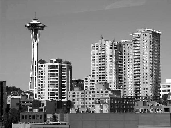 Seattle at it's Brightest by Sarah Waggener