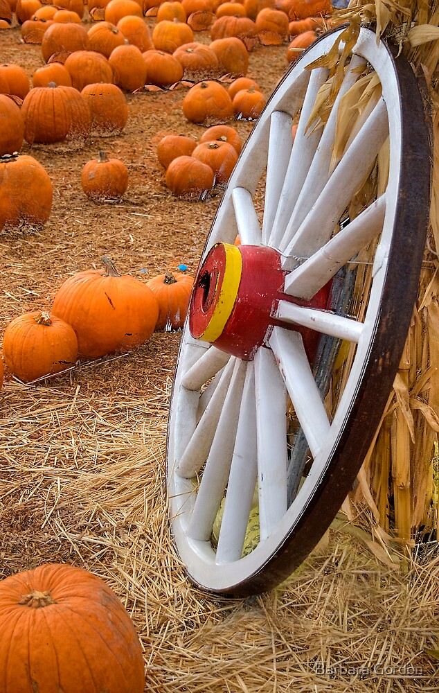 Wagon Wheel Pumpkin Patch by Barbara Gordon