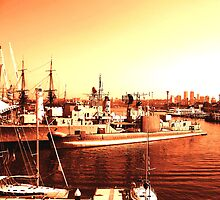 Golden Harbour by Kerryn Rogers