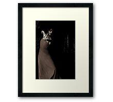 Temptation Framed Print