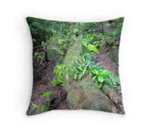 Mossman Gorge, Daintree 2 Throw Pillow