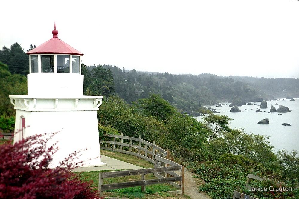Trinidad Lighthouse Calf by Janice Crayton