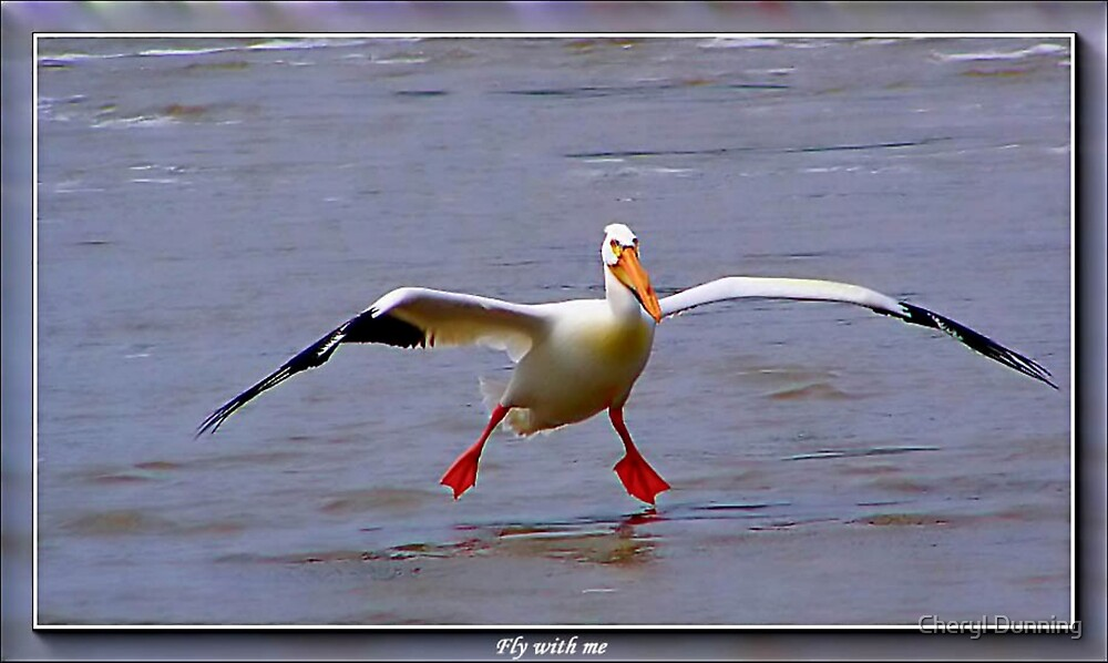 come fly with me by Cheryl Dunning
